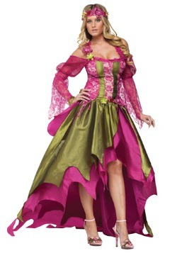 Plus Size Fairy Queen Costume