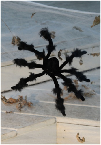 Black 20 inch Poseable Spider