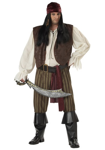 Plus Size Rogue Pirate Costume
