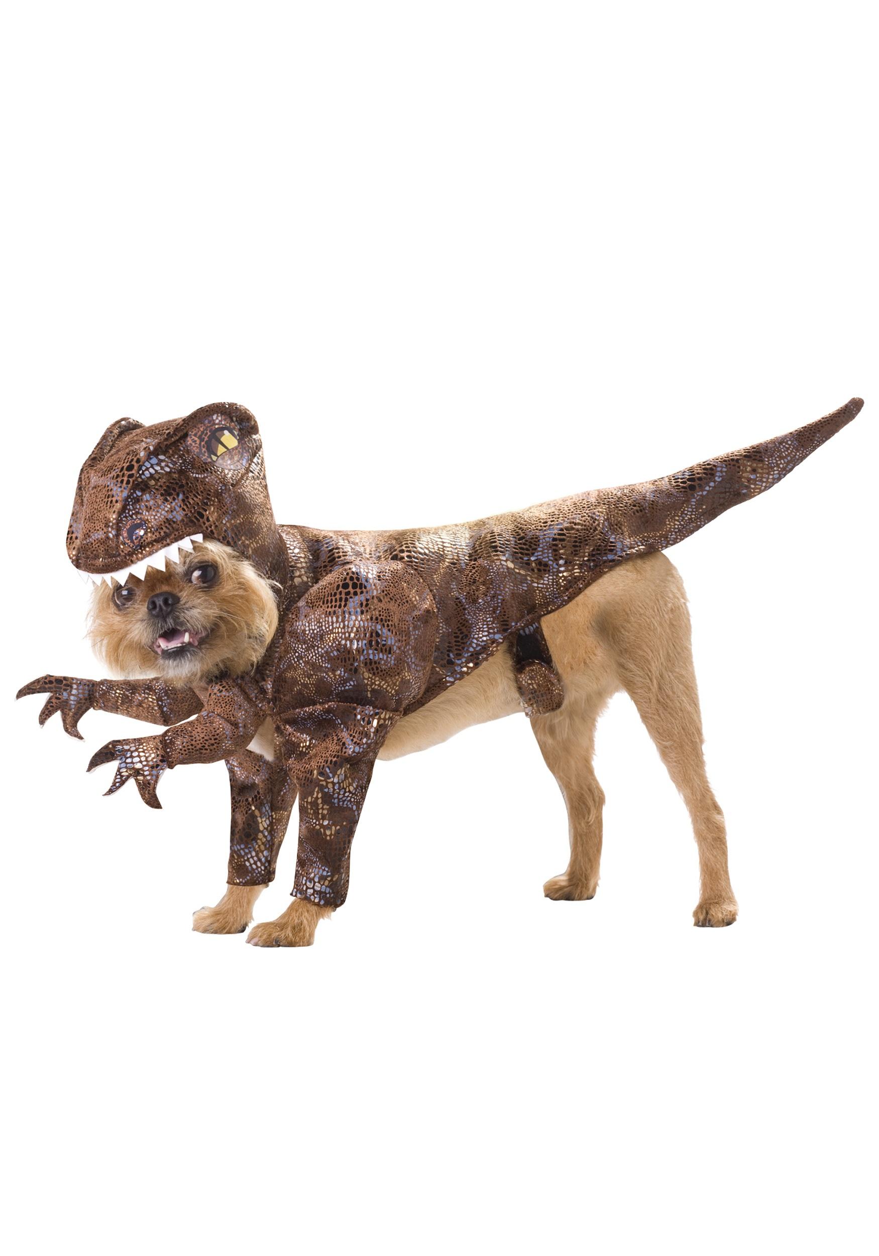 Pet Costumes - Cat, Dog Pet Halloween Costume