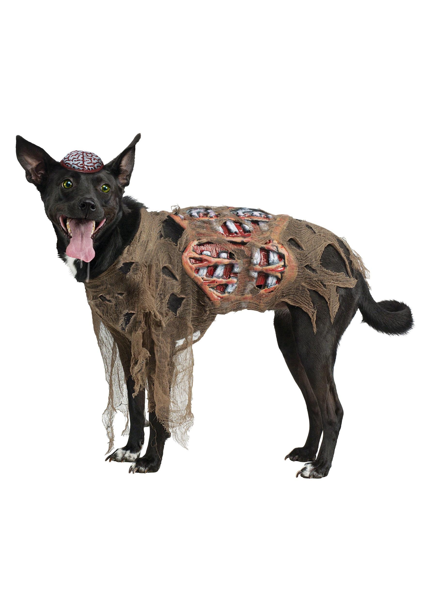 Boutique Dog Clothes Uk