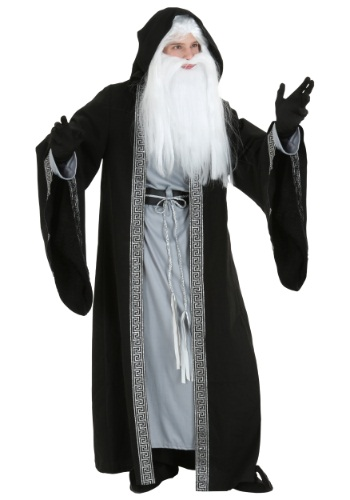 Plus Size Deluxe Wizard Costume