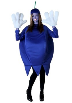 Plus Size Blueberry Costume