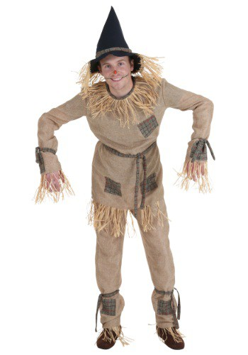 Plus Size Silly Scarecrow Costume