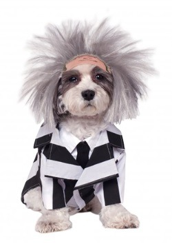Beetlejuice Pet Costume