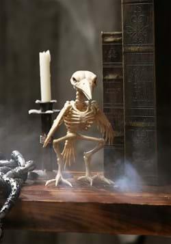 Skeleton Raven Prop