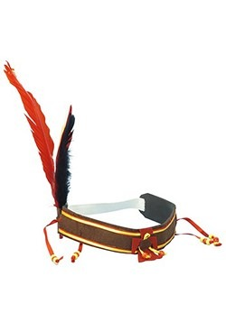 Indian Feather Harvest Headband