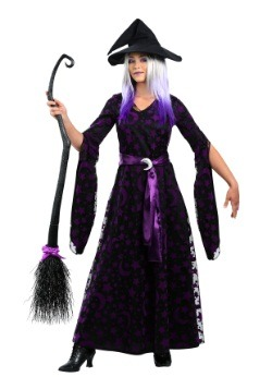 Womens Plus Size Purple Moon Witch Costume