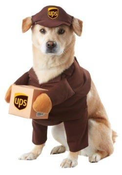 UPS Dog Costume