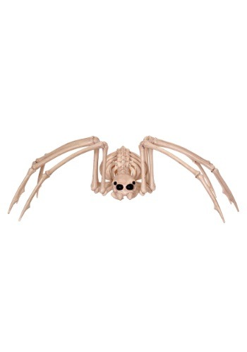 Skeleton Spider