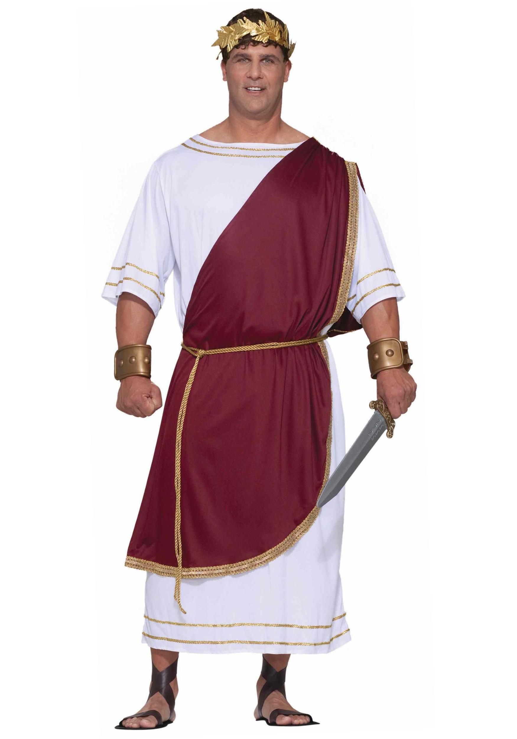 Plus Size Hail Caesar Emperor Roman Greek Toga Adult Costume