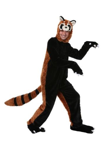 Adult Red Panda