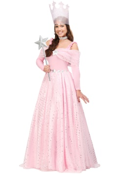 Plus Deluxe Pink Witch Dress Costume