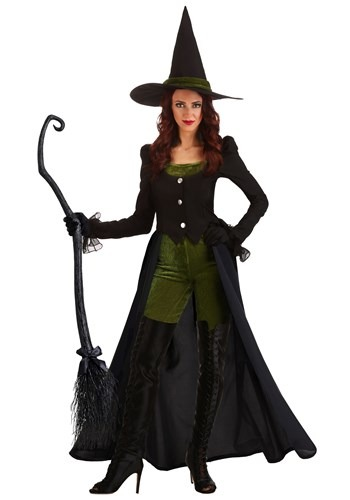 Women's Fairytale Witch Costume