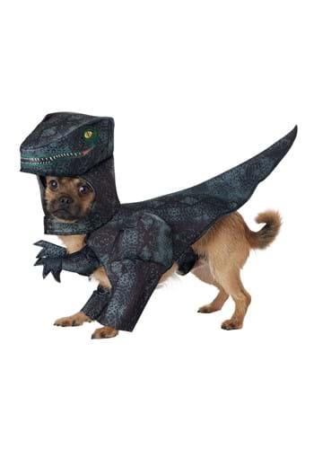 Dog Pupasaurus Rex Costume