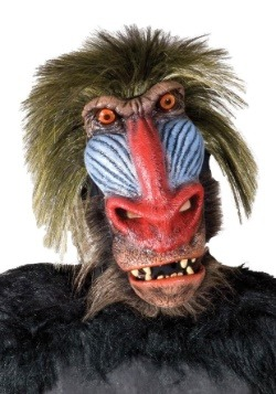 Adult Baboon Monkey Mask