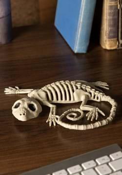 "7"" Gecko Skeleton Decoration"