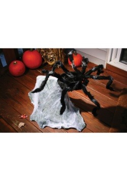36'' Giant Jumping Spider