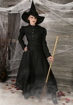 Womens Plus Size Witch Costume