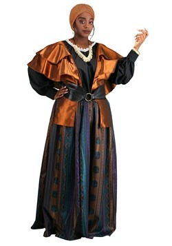 Plus Size Coven Mistress Costume