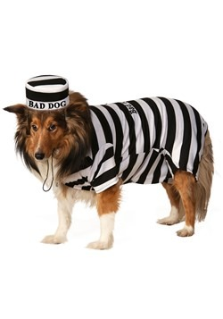 Prisoner Pet Costume