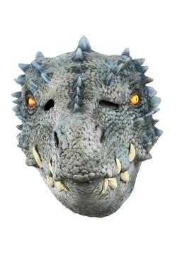 Winter Dragon Mask