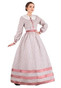 Women's Civil War Dress Costume