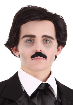 Edgar Allen Poe Wig and Mustache