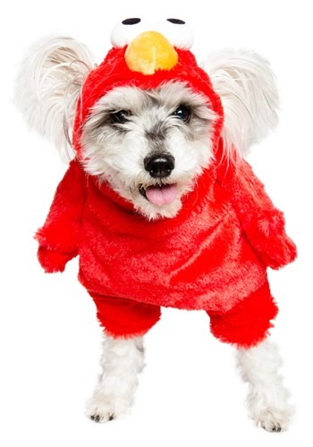 Sesame Stree Elmo Pet Costume