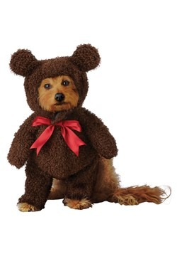 Teddy Bear Pet Costume