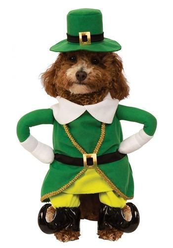Lucky Walking Leprechaun Dog Costume