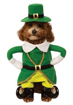 Lucky Walking Leprechaun Dog Costume