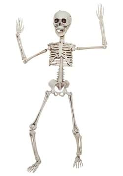 20 Poseable Skeleton