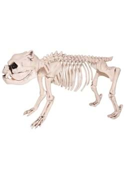 Skeleton Pug