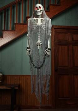 Talking Skeleton Prisoner-0