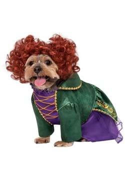 Hocus Pocus Winifred Sanderson Dog Costume