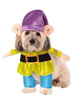 Disney Princess Dopey Dog Costume