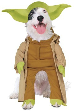 Yoda Dog Costume  sc 1 st  Halloween Costumes UK & Pet Star Wars Costumes - Dog Cat Halloween Costume Animal
