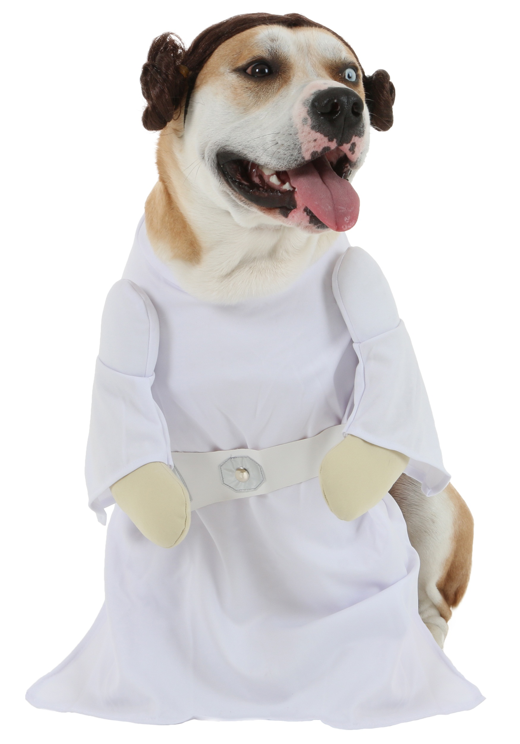 Princess Leia Dog Costume  sc 1 st  Halloween Costumes UK & Pet Star Wars Costumes - Dog Cat Halloween Costume Animal